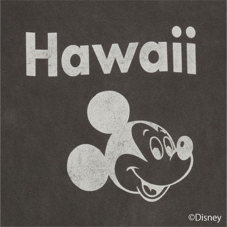 """Hawaii"" MICKEY(BLACK)No.155"