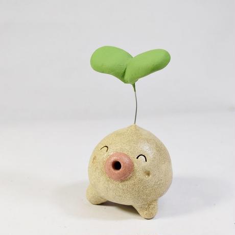 「ふたば君」今から伸びたい君へ♪植物から芽が出るときって一番勢いがある時です♪