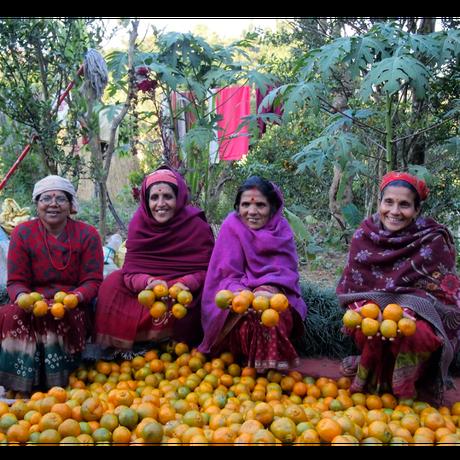 ファーマーズパッション スンタラジャム|ネパール農家応援企画・数量限定|ネパール産|16120