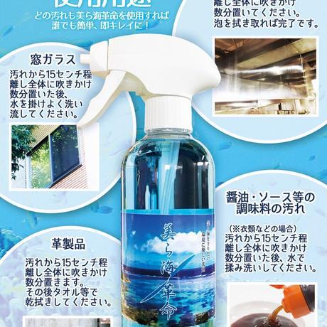 美ら海革命 400mlボトル