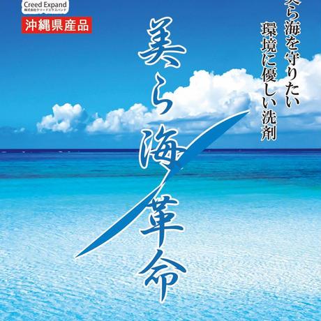 美ら海革命 2L