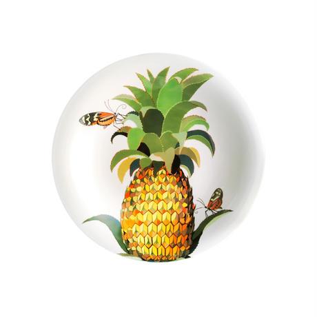 パスタ皿 トンボ斑とパイナップル