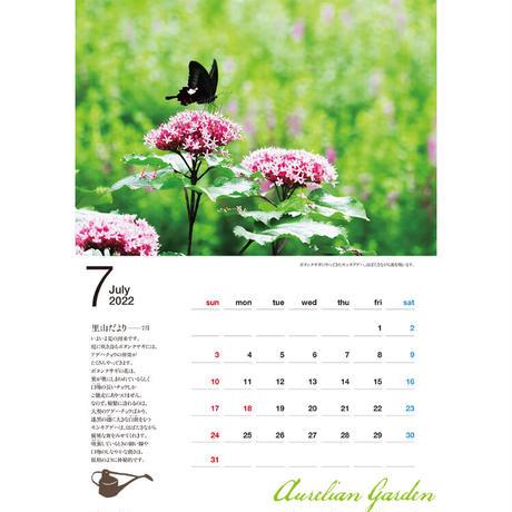 【今森光彦・購入特典】2022年カレンダー『オーレリアンの庭 里山に暮らす』(サイン入りポストカード付き)