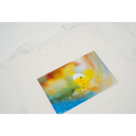 【中村征夫・購入特典】Tシャツ ナカモトイロワケハゼ(サイン入りポストカード付き)