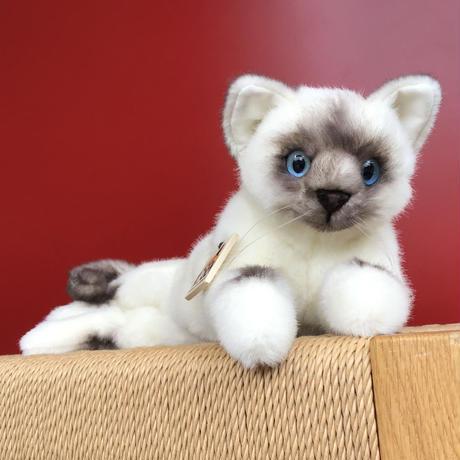 ねそべり猫(小) ヒマラヤン