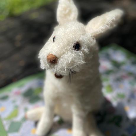 バーレーベンどうぶつ手人形 うさぎのワルダマール