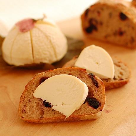 【ヤギのチーズ】さくら餅・シェーブル (Sakuramochi Chevre)