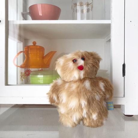 mojojojo   Todd bear  / Spotty