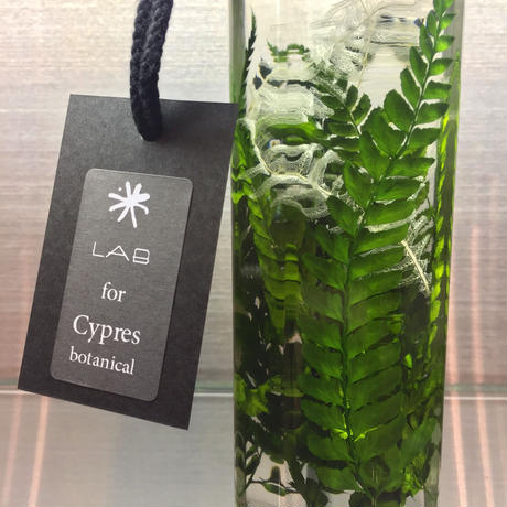 Lab bottle plants LIMITED 200ml ( 3pcs set ver.2)