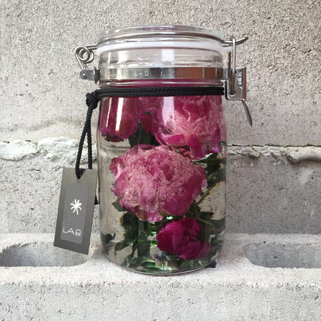 Lab bottle plants 1ℓ (peony)