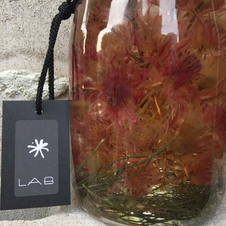 Lab bottle plants 1ℓ (serruria)