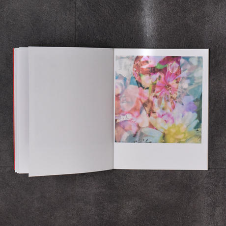 ZARA CARPENTER/flowers