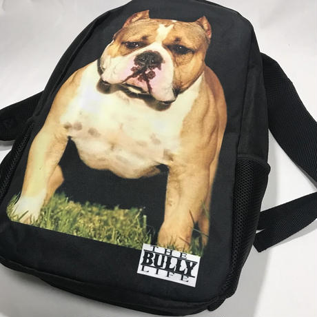 THE BULLY LYFE CLOTHING  / ブリー バックパック②