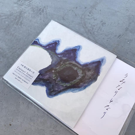 岩田茉莉江、柳沢英輔 - うみなりとなり 南大東島の音 (CD + BOOK)