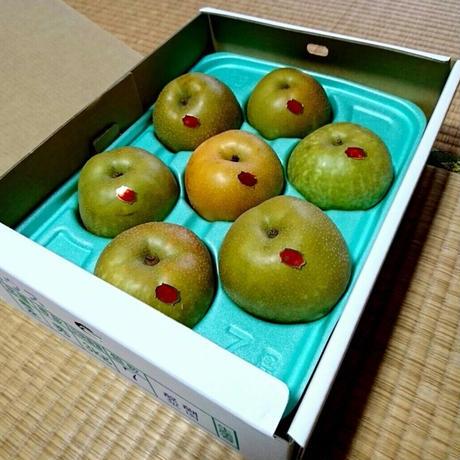 梨 幸水5kg(10〜12玉)