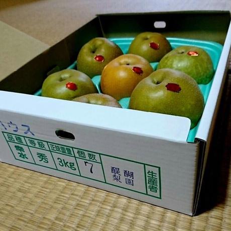 梨 幸水 3kg(6〜7玉)