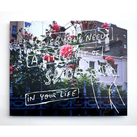 ENGLISH ROSE_photo aluminum mount