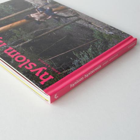 hysteresis/hyslom