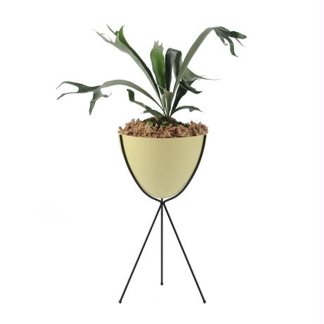 Retro Bullet Planter by Hip Haven™ – Tall(Rattan)