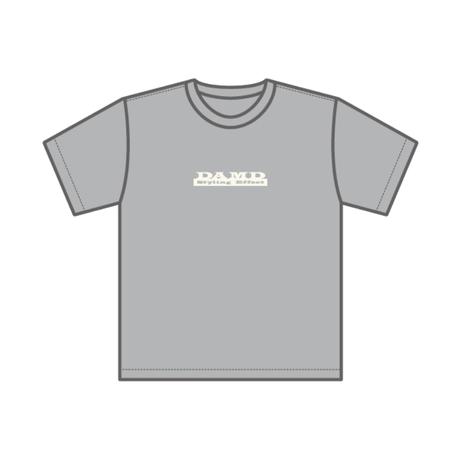 S.E box logo T-shirt 【2019 - GRAY】