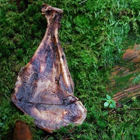 山梨県産鹿の羽子板〈L〉
