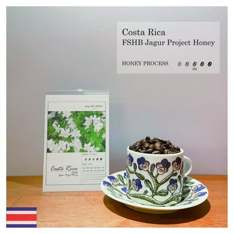 [COSTA RICA] FSHB Jagur Project Honey  (100g)