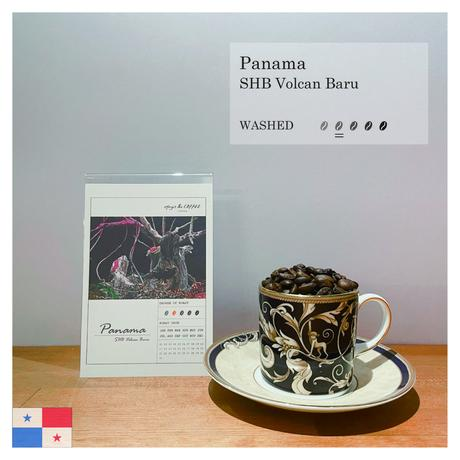 [PANAMA] SHB Volcan Baru (100g)