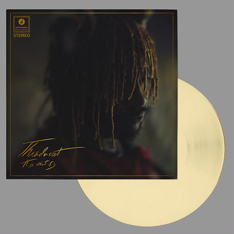 (LP) THUNDERCAT / It Is What It Is <soul / R&B / hiphop>