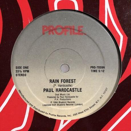 "(12""/ used) Paul Hardcastle ‎/ Rain Forest  <electro /mellow groove>"