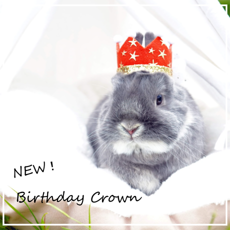 Birthday ★ Crown レッド