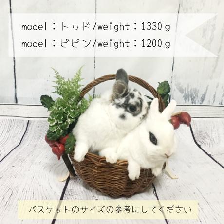 5b4f59365f786665c90002c9