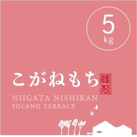 【R.3年産新米】【玄米 5kg】  そら野テラスの『こがねもち』(もち米)