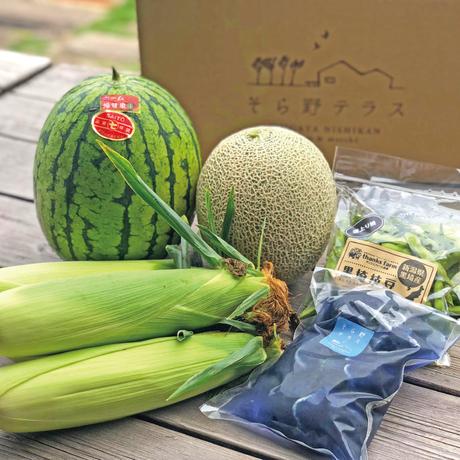 【7/1〜販売】とれたて!夏野菜セット