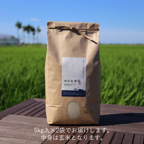 【R.2年度産】【玄米10kg】そら野テラスの『コシヒカリ』
