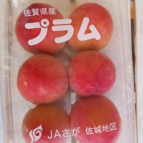 初物!出始めの果物 詰め合わせ 4種類
