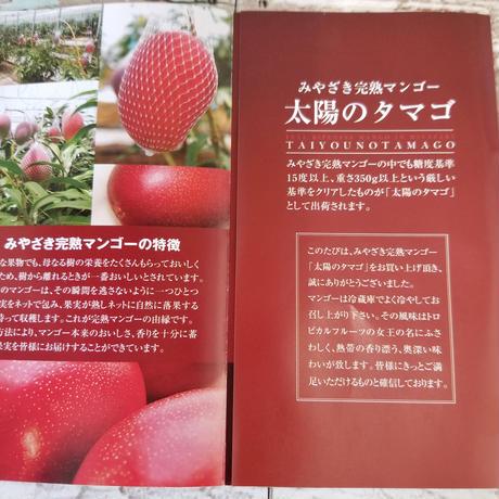 宮崎県が誇るフル-ツ 完熟マンゴ- 最高級ランクAA【太陽のたまご】4Lサイズ2玉入り