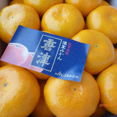 佐賀県産 ハウスみかん 2.2kg(約22個入り)