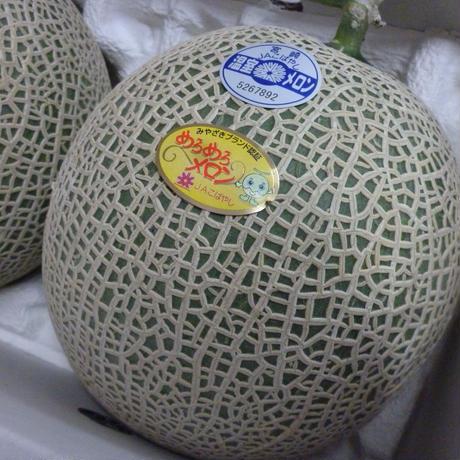 贅沢なギフト めろめろメロン&完熟マンゴ-のセット