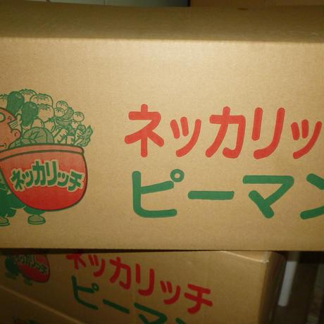 有機農法 ネッカリッチ資材使用 苦くないピ-マン 10kg/ケ-ス