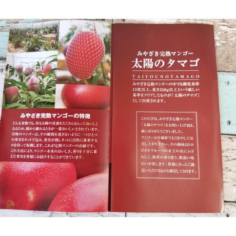 宮崎県が誇るフル-ツ 完熟マンゴ-【太陽のたまご】最高ランクAA 3Lサイズ2玉入り