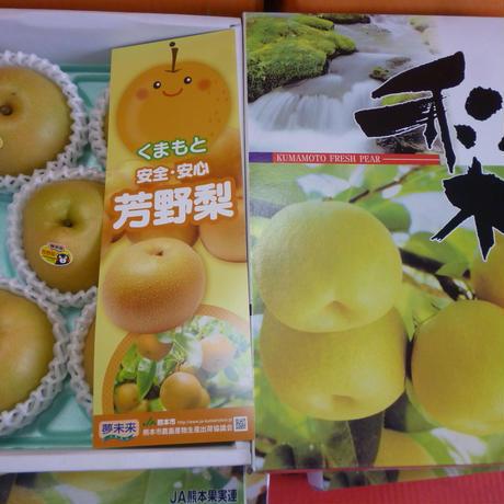 熊本県 芳野梨 5玉セット