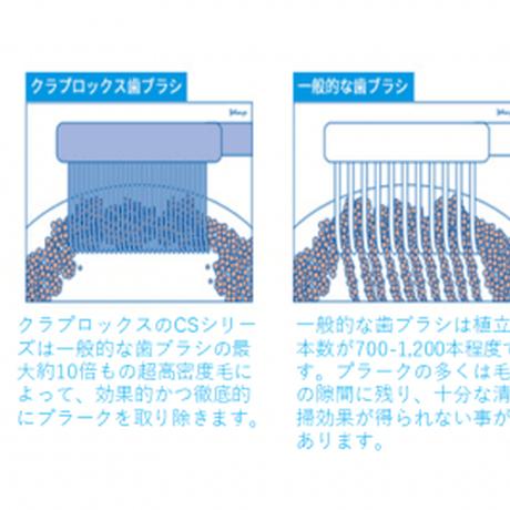 クラプロックス CS 5460(3本セット:色は選べません)