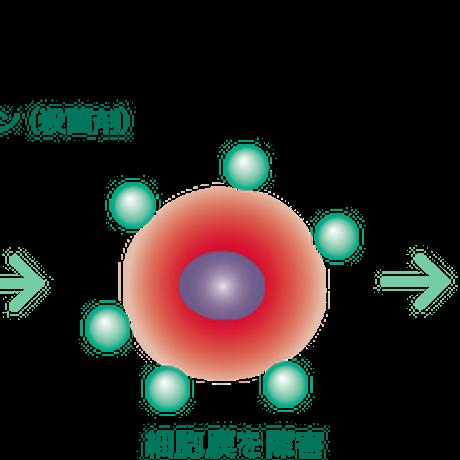 コンクールシリーズ(コンクール/ジェルコートF/リペリオ 各1本 計3本セット)