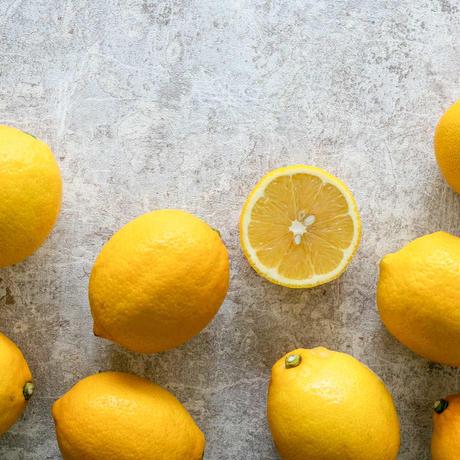 2021年新物「瀬戸内レモンバター」(発送目安:注文から1ヶ月〜6ヶ月)12月発送開始