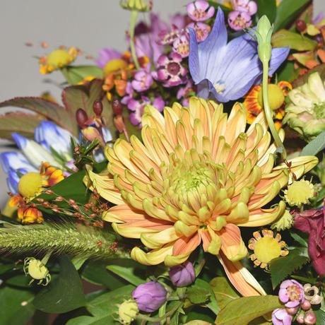 Autumn arrangement【¥5,000】