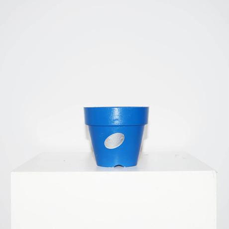 Blue Pot 4号(H11×W12.5)