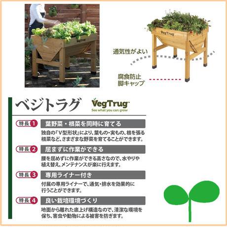 プランター【VegTrug  ベジトラグ】木製 ACQ(S)野菜 植物 家庭菜園 教材 ハーブ YT-P328