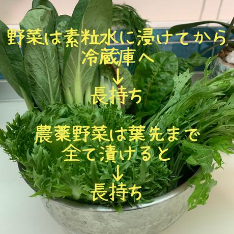【正しいお水💧素粒水】浄水器ワンウォーターECO
