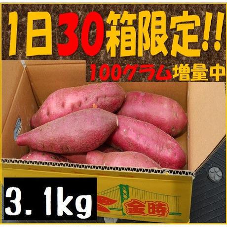料理に最適!なると金時3kg+100g増量中!