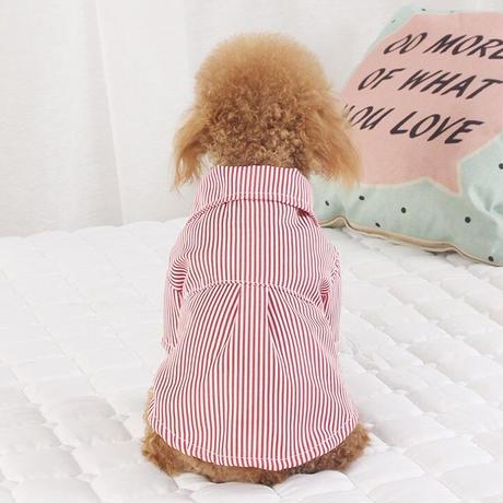 ストライプ蝶ネクタイシャツ